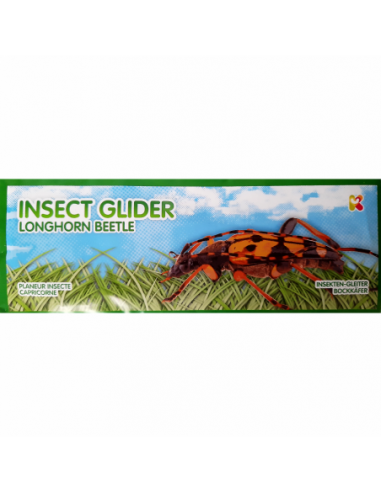 Jucarie Planor Insecte, lungime 24 cm...