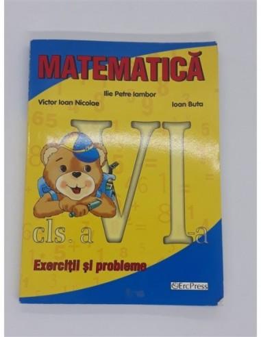 Matematica Exercitii si Probleme clasa 6