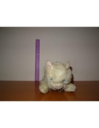 Pisicuta alba cu ochii albastrii si zgarda roz