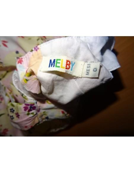 Salopeta multicolora fetite